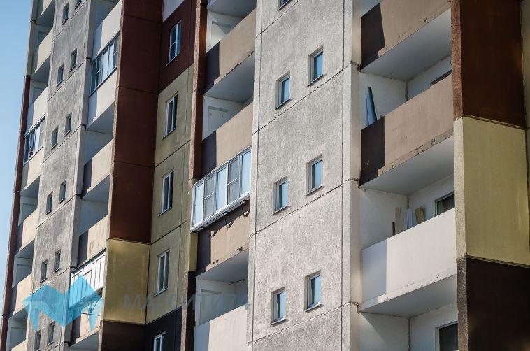 Магнитогорца осудят за выброшенную с 9 этажа собаку
