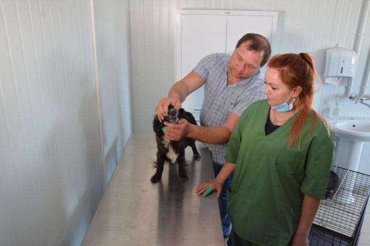 «Даст шанс навторую жизнь» . Под Магнитогорском открылся первый приют для животных