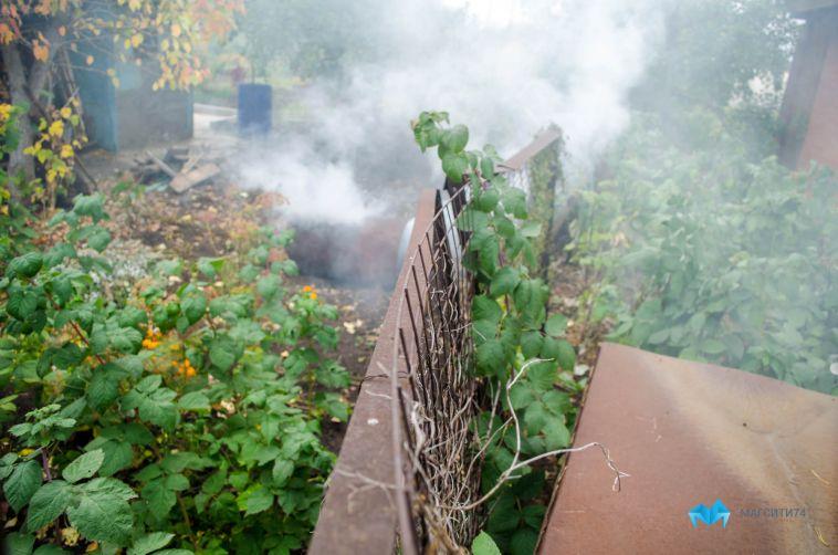 В Магнитогорске из-за непотушенной сигареты сгорели сарай и садовый дом