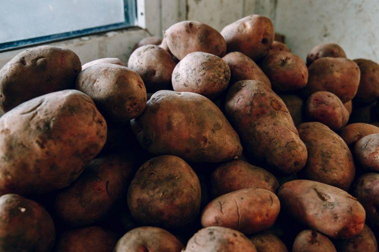 Когда наЮжном Урале можно высаживать картошку?