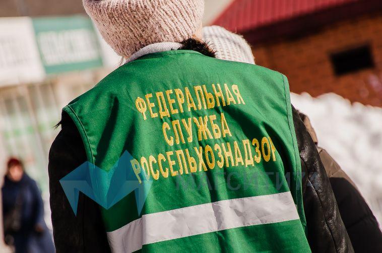 Челябинская область вошла в число регионов-лидеров по бешенству животных
