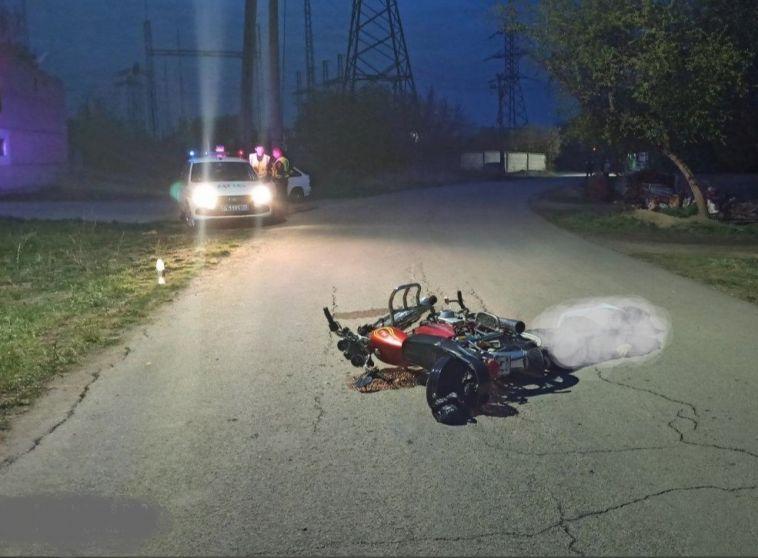 В Челябинской области водитель мопеда погиб из-за собаки, перебегавшей дорогу