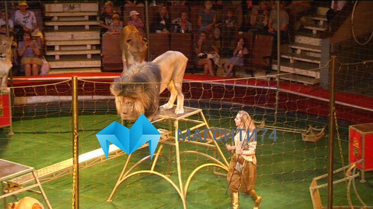 Ожившие картинки цирка 120-летней давности на магнитогорском манеже