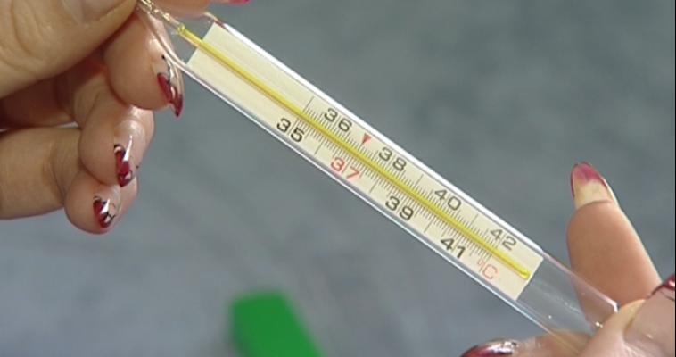 Роспотребнадзор прогнозирует рост заболеваемости ОРВИ и гриппом в ближайшие 2 недели