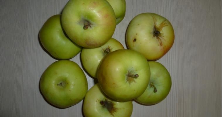 20 тонн яблок не прошли проверку на границе