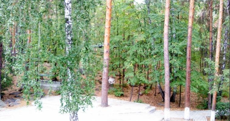 Сено, зерно, соль. На Южном Урале дикие животные не останутся без корма