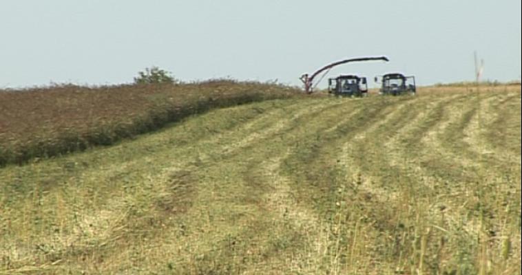 Судебные приставы арестовали комбайн фермера-должника