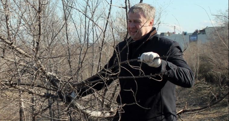 «Все жители Магнитогорска должны выйти на субботники». Магнитогорские чиновники показали пример, очистив парк Победы от мусора