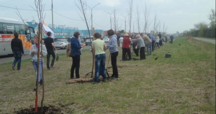 В Магнитогорске высадили «Лес Победы»