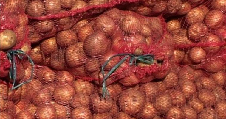 Производители снизили цены на картофель
