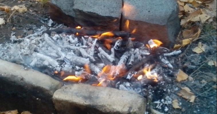Костер может в считанные минуты стать лесным пожаром