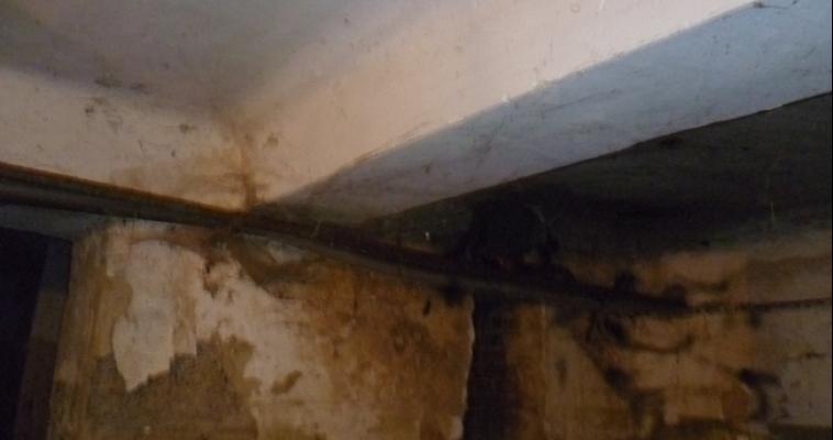 Жильцы дома по улице Набережная вызывают «скорую» из-за проблем с канализацией