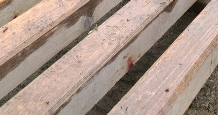 Самоубийца из посёлка Цементников страдал шизофренией и был сектантом