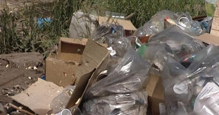 В Челябинской области выяснили, из чего состоит мусор