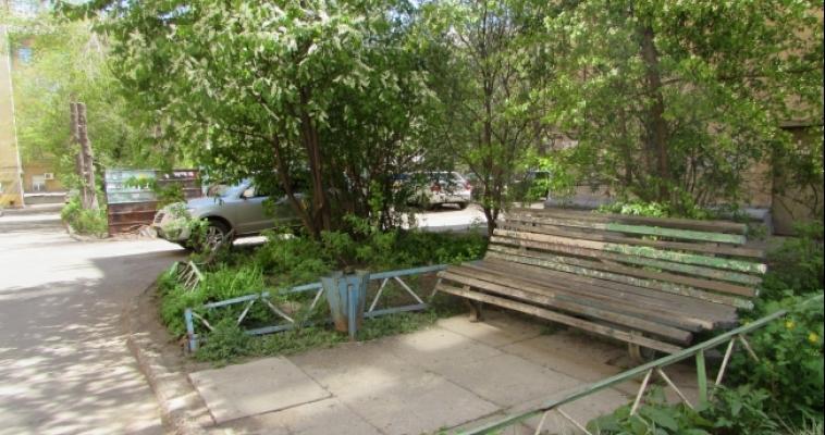 Парки и скверы города не обработаны от клещей