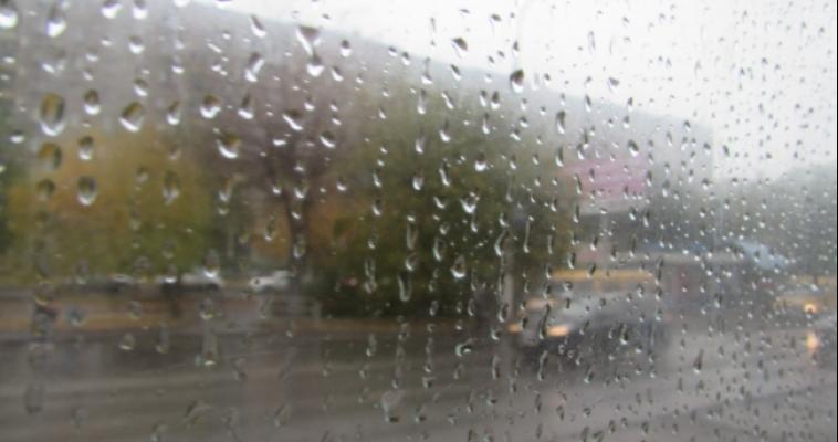 Пасмурно и дождливо. Прогноз погоды на выходные
