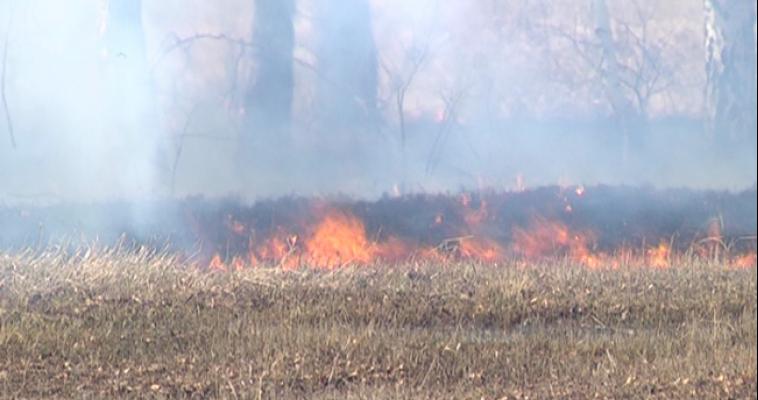 На выходных ожидается высокая пожарная опасность