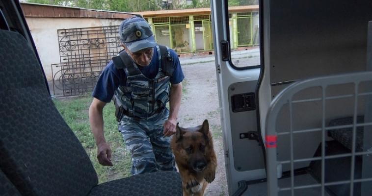 Полицейские совместно с кинологами раскрыли две кражи