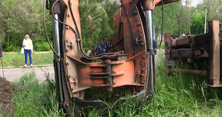 Из питомника на улицы и в парки. В Магнитогорске приступили к посадке крупногабаритных деревьев