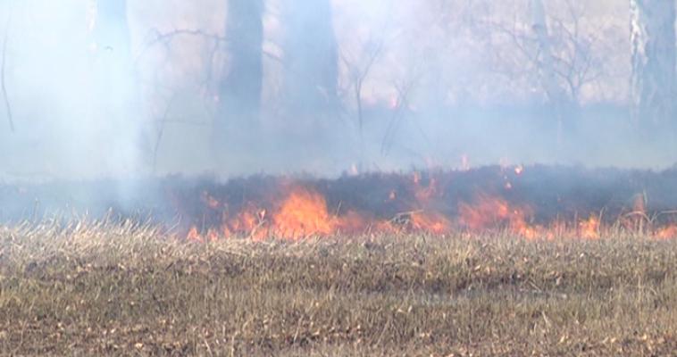 В регионе сохраняется чрезвычайная пожарная опасность