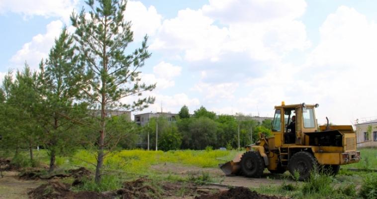 На площади возле Дворца культуры железнодорожников продолжается высадка крупногабаритных деревьев