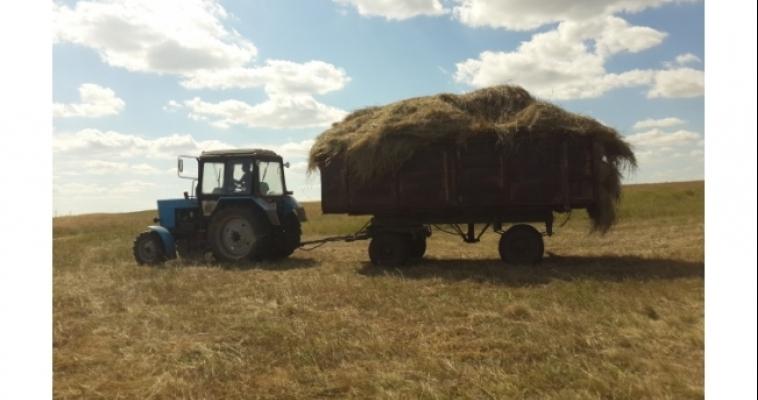 Аграрии Южного Урала заготовили более 120 тысяч тонн кормов