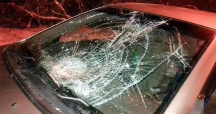 Школьница погибла под колёсами автомобиля