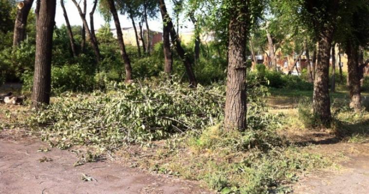 В Магнитогорске снесут порядка двух тысяч аварийных деревьев