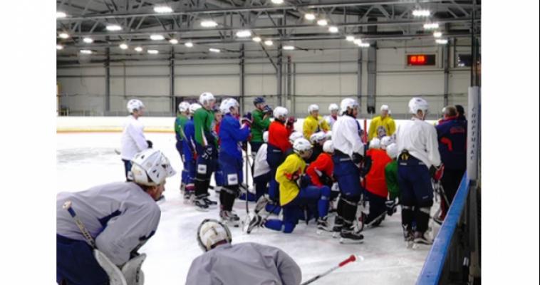 Болельщикам команды «Стальные лисы» предлагают поучаствовать в видеопроекте совместно с хоккеистами