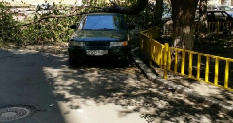 Последствия непогоды: упавшее дерево до сих пор лежит на автомобиле. Кто в ответе?