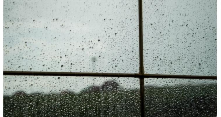 Дождь не отступает. На сегодняшний вечер объявлено штормовое предупреждение