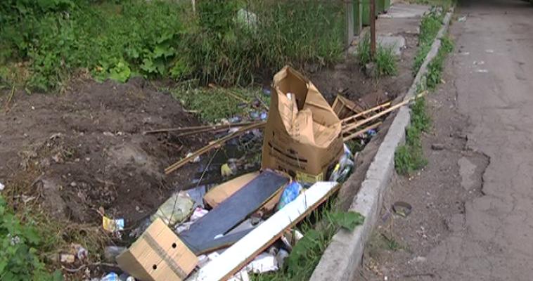 И.о. главы города предложил пропаганду чистоты с помощью плакатов для населения