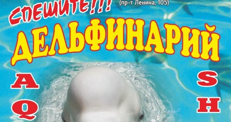 Ура! К нам приехал дельфинарий! Попасть на представление можно бесплатно!