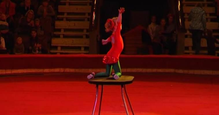 Цирк (06.11)