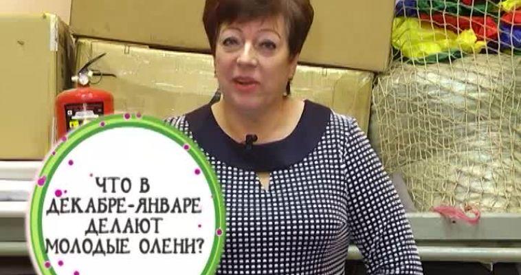 ВНИМАНИЕ, ВОПРОС! (19.10)