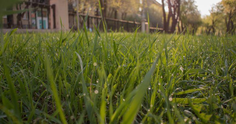 Как определить кадастровую стоимость земельных участков?