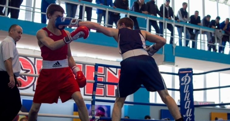 Два магнитогорца стали победителями турнира по боксу