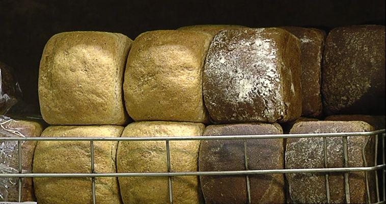 С заботой о ближних. Волонтеры бесплатно раздают хлеб бездомным и пенсионерам