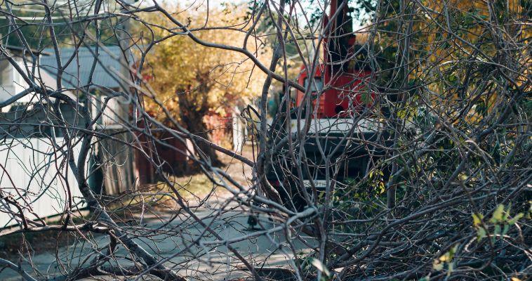 Магнитогорцев призывают бороться за чистоту любимого города