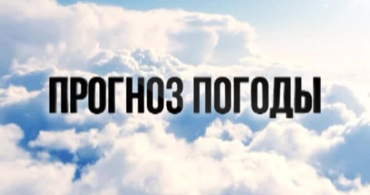 ПРОГНОЗ ПОГОДЫ (13.01)
