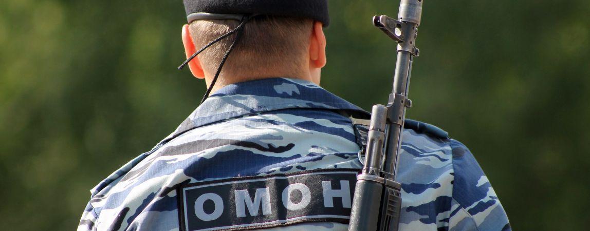 «В случае возникновения угрозы армия сможет защитить население страны»