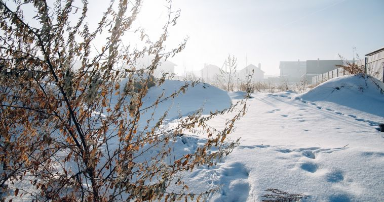 И снова снег. Прогноз погоды