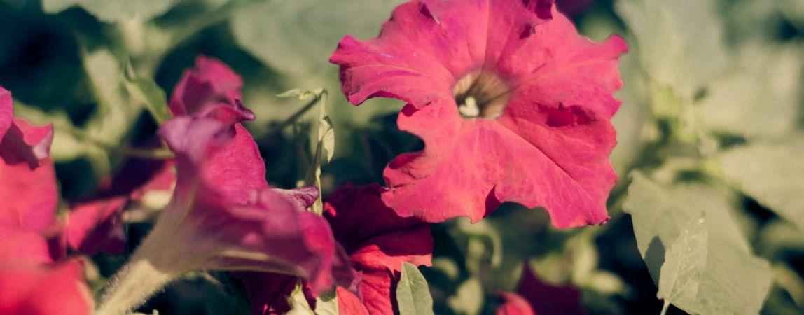 «Посадите у себя цветочки». Нацгвардия получила в пользование помещение, но в плачевном состоянии