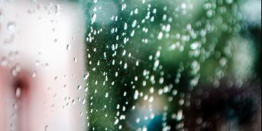 Сохраняется вероятность дождей и сильного ветра