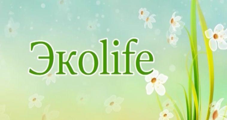 ЭКОLIFE (24.07)