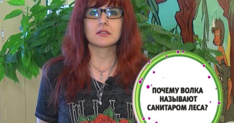 ВНИМАНИЕ, ВОПРОС! (14.08)