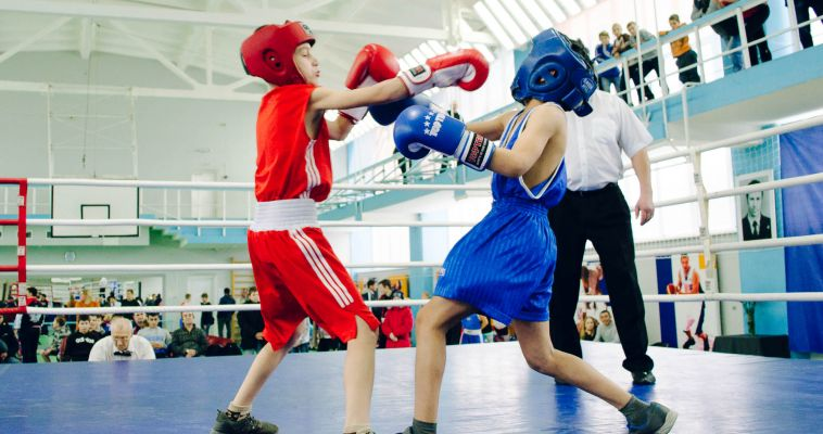 «Динамо» приглашает на бокс