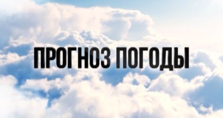 ПРОГНОЗ ПОГОДЫ (17.01)