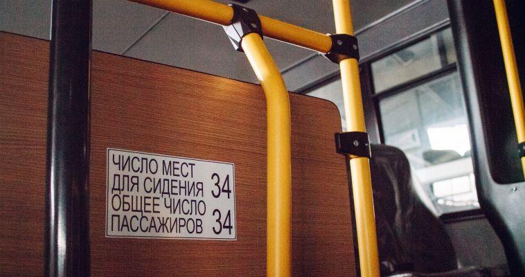 Власти «уберут» неофициальных перевозчиков с междугородних рейсов
