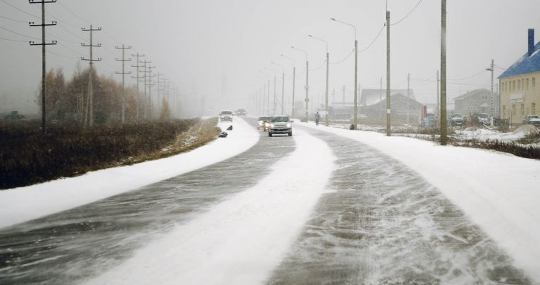Депутаты выделили 175 миллионов рублей на озеленение и ремонт дорог